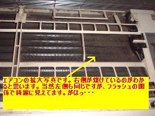 f0031037_20115787.jpg