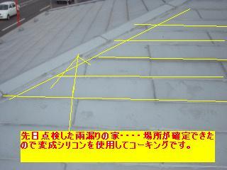 f0031037_2013066.jpg