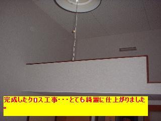 f0031037_207441.jpg
