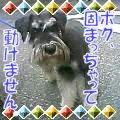 b0108053_0132930.jpg