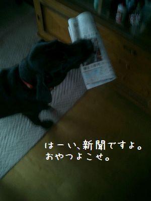 b0000885_2156227.jpg
