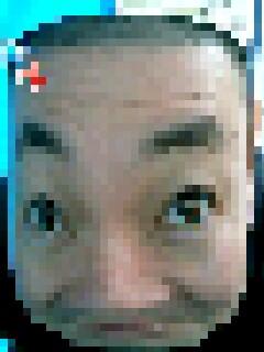 d0065320_2162829.jpg