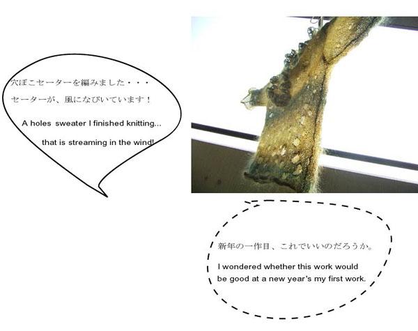 ひとり言     talked to myself_b0029036_21483611.jpg