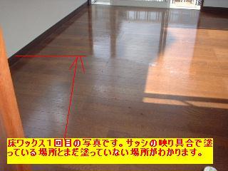 f0031037_1947861.jpg