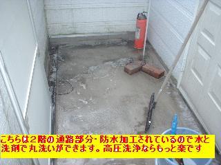 f0031037_1952547.jpg