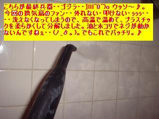 f0031037_19533849.jpg
