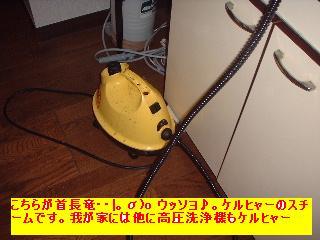 最終兵器!!_f0031037_19534798.jpg
