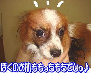 f0011845_0591041.jpg