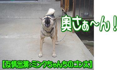 f0011845_18474.jpg