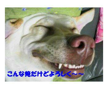 f0057565_1837766.jpg