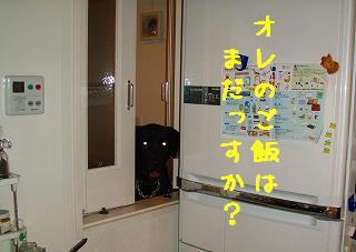 b0003270_15182462.jpg