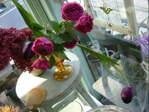 オークリーフ(ただ美しい花)_f0049672_1675561.jpg