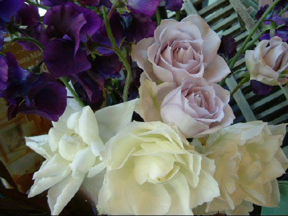 オークリーフ(ただ美しい花)_f0049672_168136.jpg