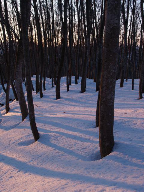 美人林の朝日、その1_a0025576_2333452.jpg