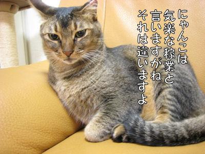 a0045990_142281.jpg