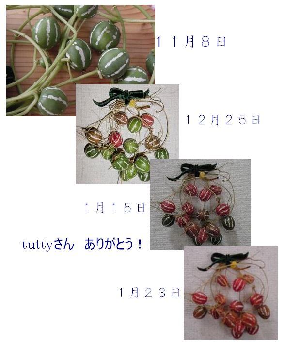 f0088197_166525.jpg