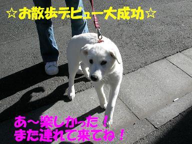 f0121712_10325969.jpg