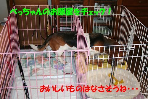 f0121712_20102095.jpg