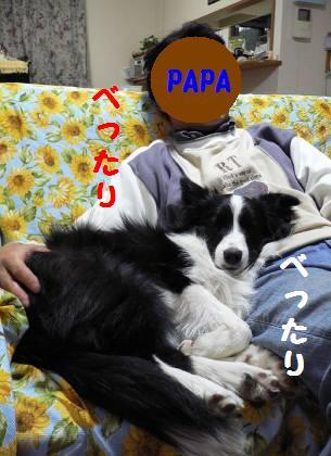 d0059230_0175785.jpg
