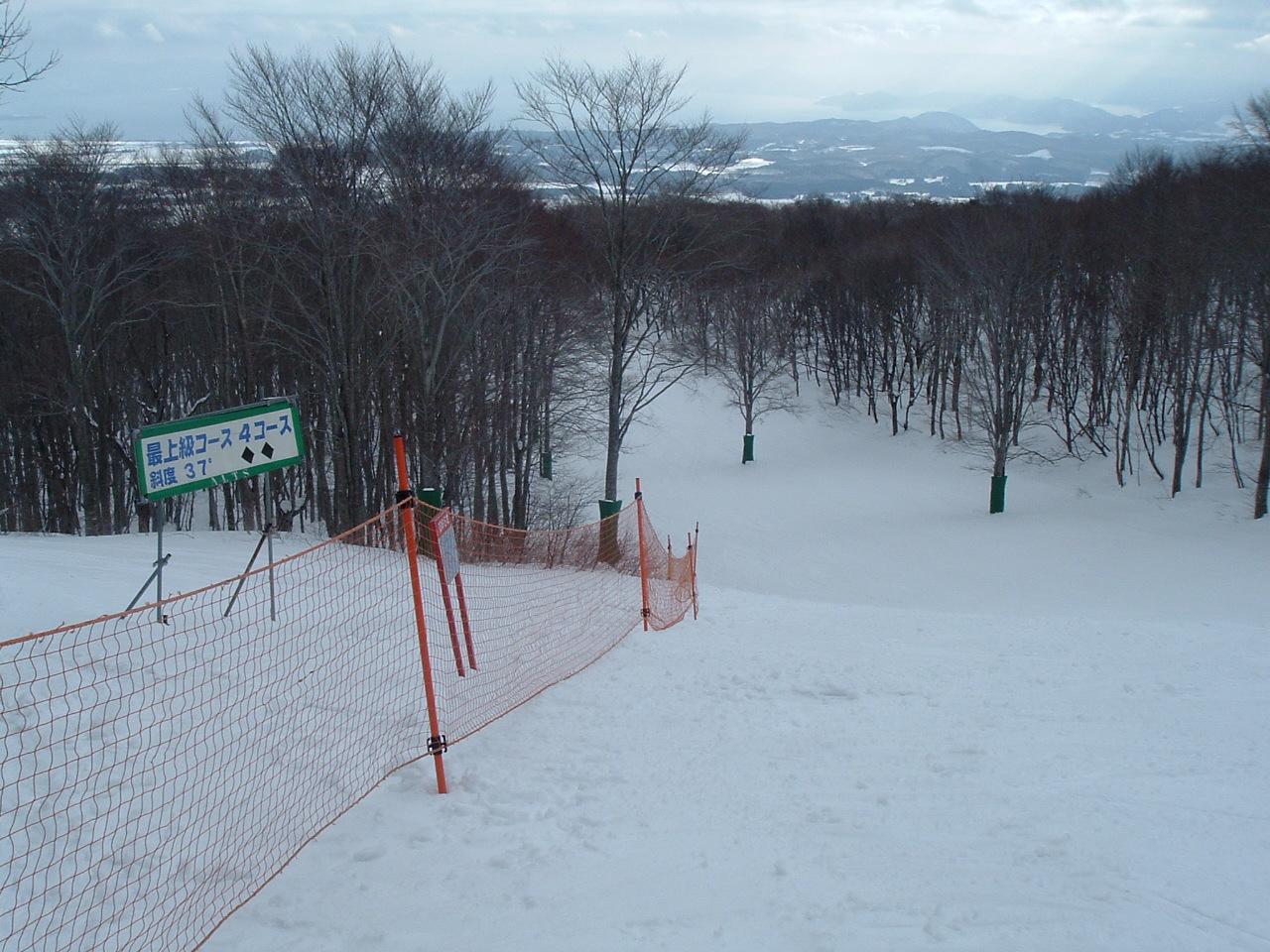 アルツ 厩岳山_f0032130_1075483.jpg