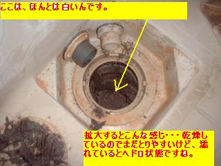 f0031037_18215229.jpg
