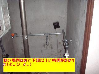 f0031037_1841323.jpg