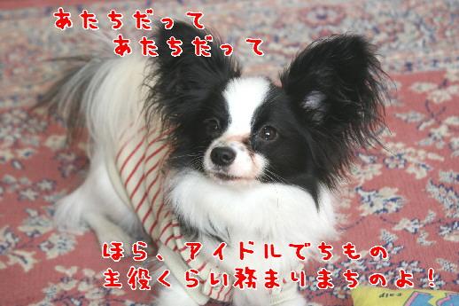 d0013149_1162516.jpg