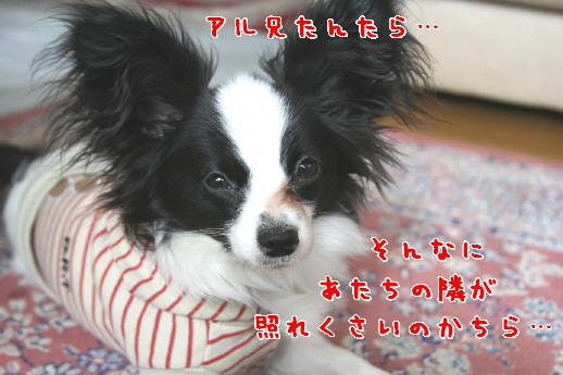 d0013149_23553694.jpg