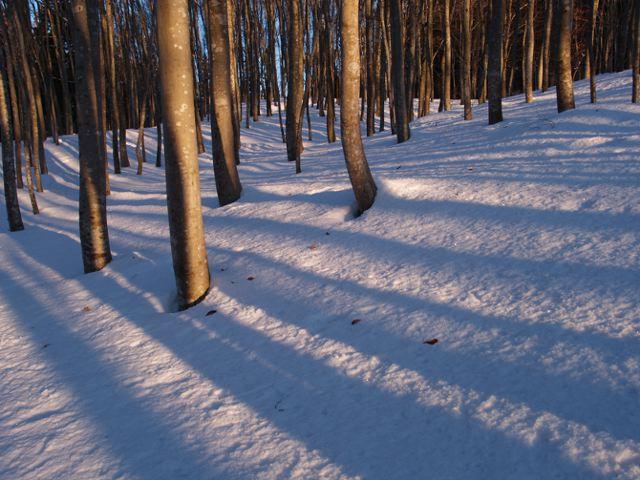 美人林の朝日、その2_a0025576_23282250.jpg