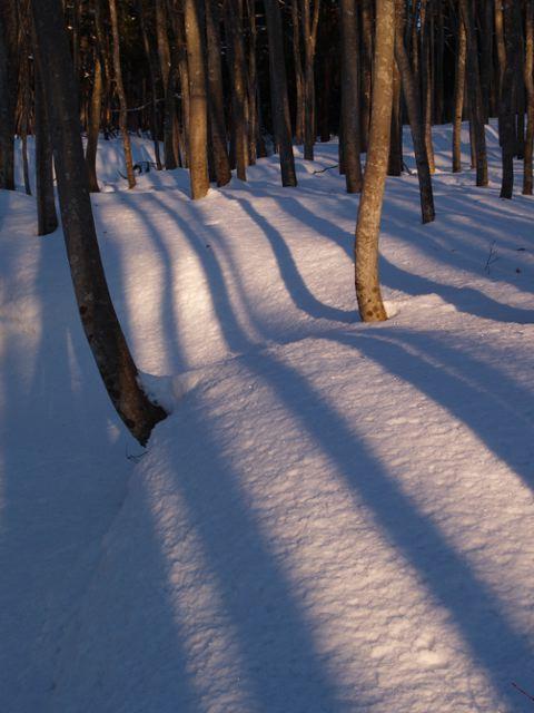 美人林の朝日、その2_a0025576_23283775.jpg