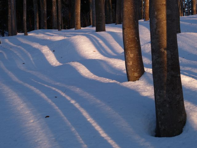 美人林の朝日、その2_a0025576_2328876.jpg