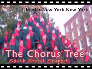 ニューヨークのビデオ映像による動画配信もはじめました♪_b0007805_14363043.jpg