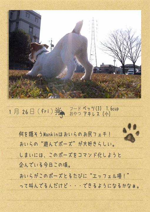 b0040323_0371377.jpg