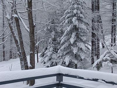 またいい雪が降っています_d0102327_19161119.jpg