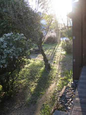 アトリエ熊本とその庭_c0107829_2116673.jpg