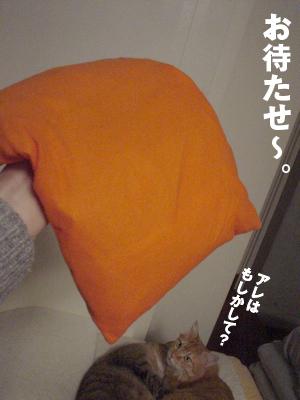 b0080632_19442020.jpg
