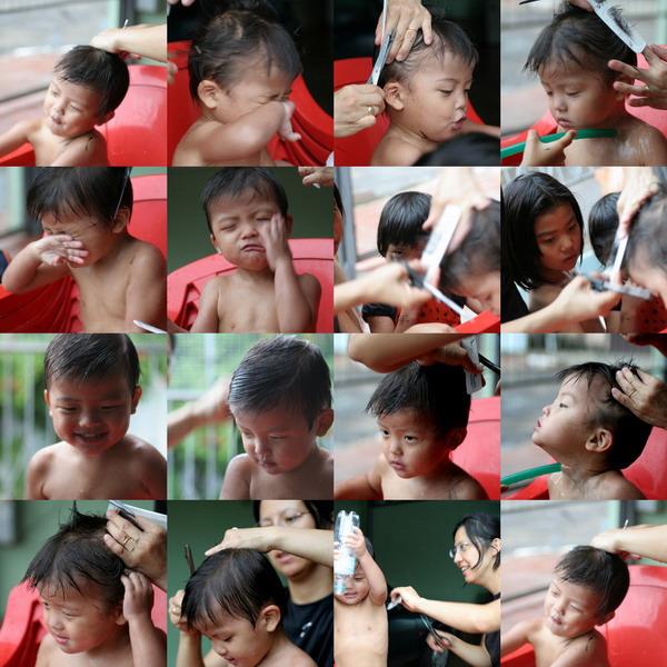 散髪はママィの出番なのだ。切りすぎご免!_e0110461_503833.jpg