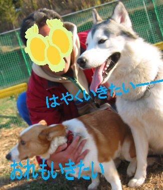 f0112407_125812100.jpg