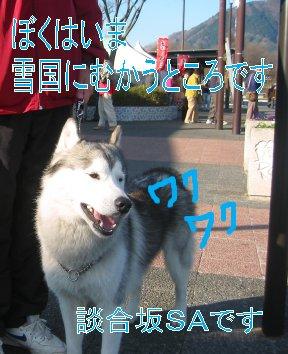 f0112407_23331218.jpg