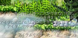 f0048418_913716.jpg