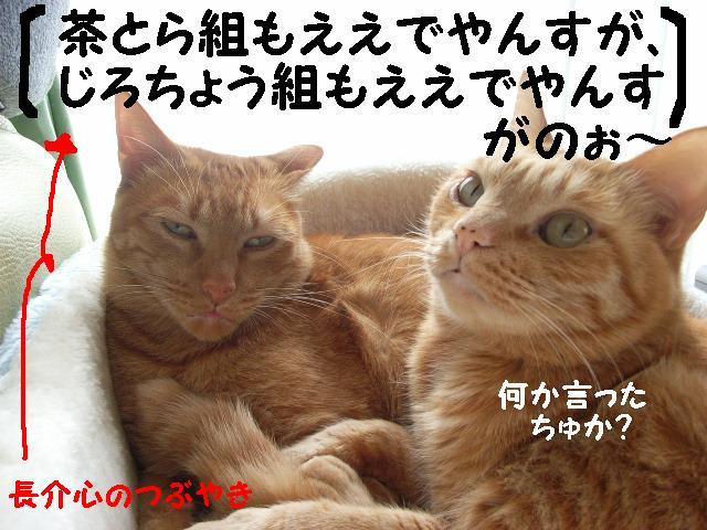 d0081025_2013490.jpg