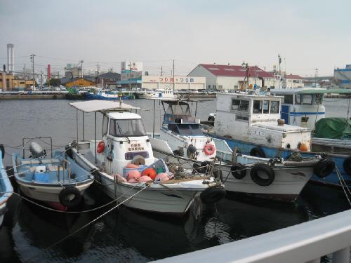 小さな釣り船が沢山並んでいる船着場、個人のものと思われる船もあって、形も大きさも様々です。向こう側の対岸につり具、つり磯と書かれたお店の屋根が見えています。