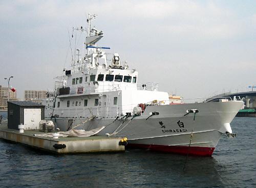海洋調査船なのか、水産庁と書かれた白い船が停泊していました。名前は白鷺号です。