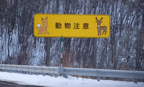 北海道最終日_a0087133_20424354.jpg