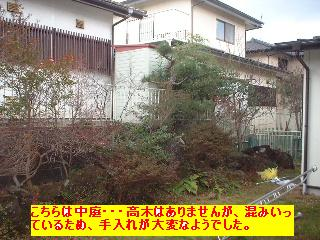 植木の剪定~♪風邪にパブロン・・・ぐはっ。_f0031037_15424263.jpg