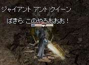 f0043259_929749.jpg