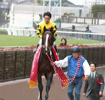 根岸Sは、ビッググラス&村田騎手が嬉しい初重賞制覇_b0015386_20423593.jpg