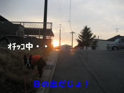 c0092787_1074085.jpg