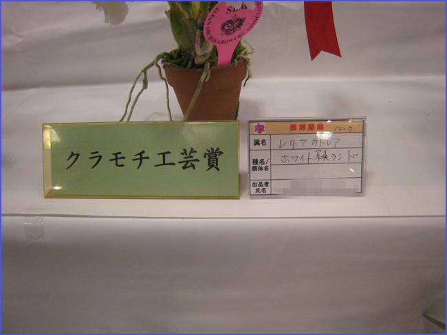 d0035398_19342850.jpg