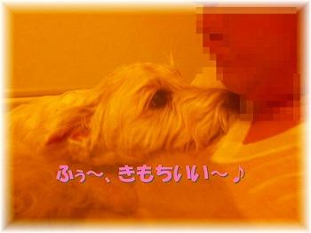 f0039907_22411644.jpg